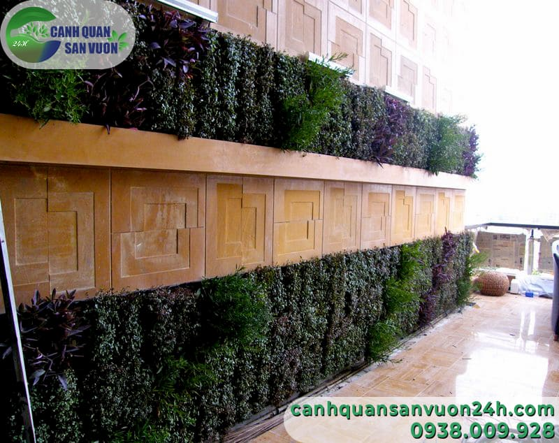 Thi công vườn tường đẹp